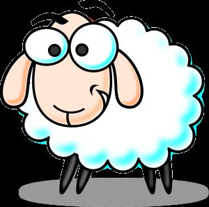 sheep-160041_1280